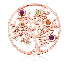 Citrine, Peridot, Rhodolite & 10kt Rose Gold Tree Coin Locket Insert
