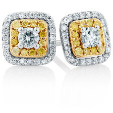 Online Exclusive - Stud Earrings with a 1/2 Carat TW of Yellow & White Diamonds in 10kt Yellow & White Gold
