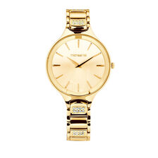 Ladies' Watch with Crystals in Gold Tone Stainless Steel