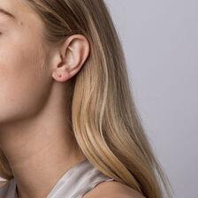 2mm Ball Stud Earrings in 10kt Yellow Gold