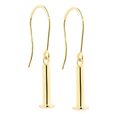 Charm Earrings in 10kt Yellow Gold