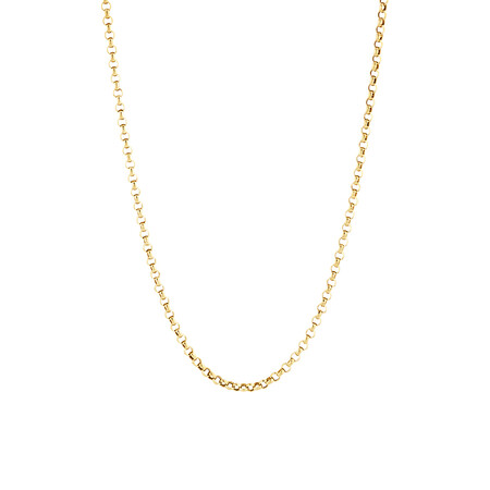 "50cm (20"") Belcher Chain in 14kt Yellow Gold"