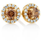 Natural Champagne Stud Earrings with a 1/2 Carat TW of Champagne & White Diamonds in 10kt Yellow Gold